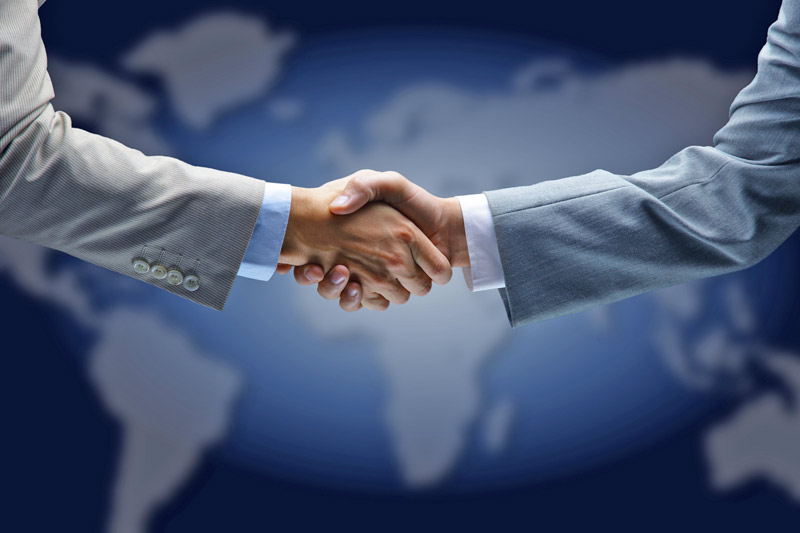 Autolatina a failed busines partnership