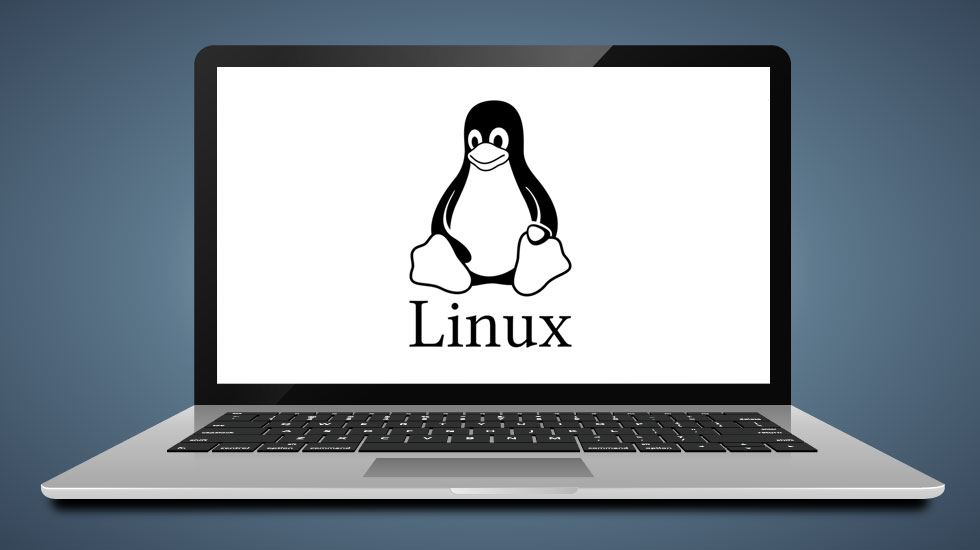 Linux Laptop