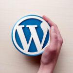 Compulsory Questions You Must Ask Before Hiring a WordPress Developer