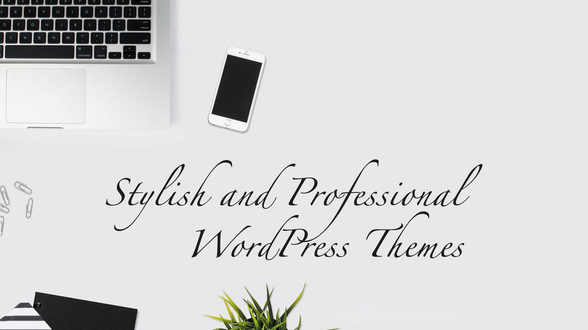 Stylish and Professional WordPress Themes